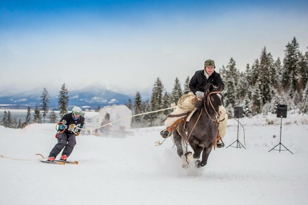 Skijoring in Lakeside, Montana