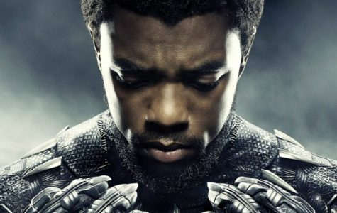 Black Panther: A Box Office Triumph