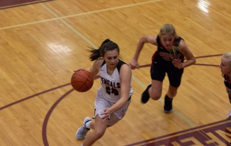 Photo Gallery: Girls Varsity Basketball