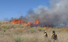 Australia's Wildfires