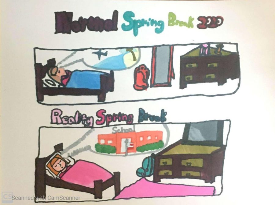 Spring Break: Dreaming of School